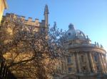 20150606_Oxford1